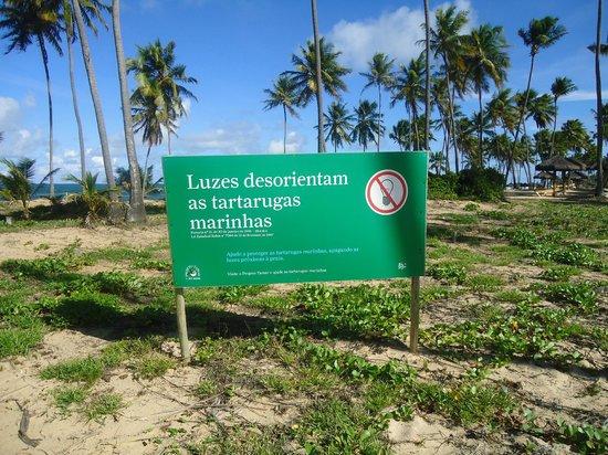 Iberostar Praia do Forte: Preocupação com a fauna