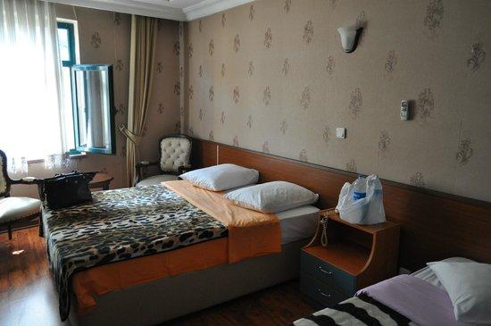 Hotel Pera Capitol: Δωμάτιο