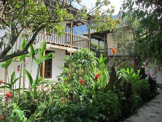 El Albergue Ollantaytambo: Rear garden