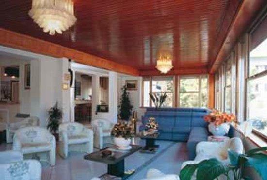 Hotel Vittoria: Sala soggiorno e relax