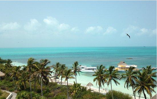 Isla Contoy, المكسيك: vue de la tour