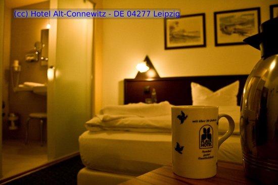 Hotel Alt-Connewitz: Doppelzimmer - Standard