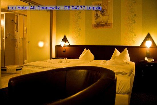 Hotel Alt-Connewitz: Doppelzimmer Komfort
