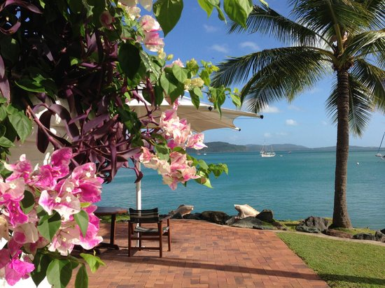 Coral Sea Resort: View of garden, tables and ocean.