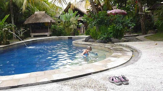 Swasti Eco Cottages: Pool
