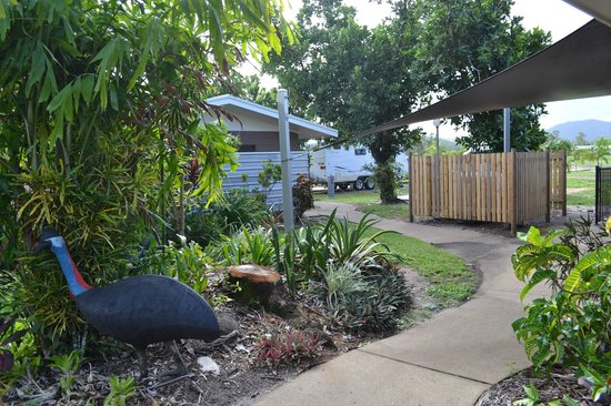 Dunk Island View Caravan Park: Outside the Camp Kitchen