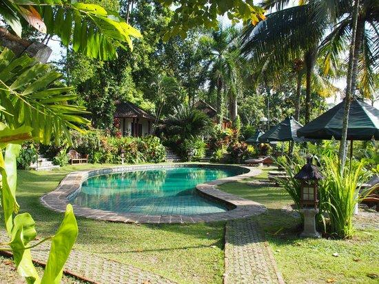 Alam Sari: Tranquil setting