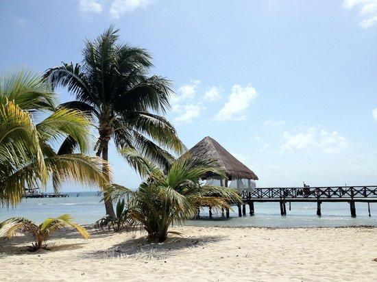 Isla Mujeres Palace: Beach