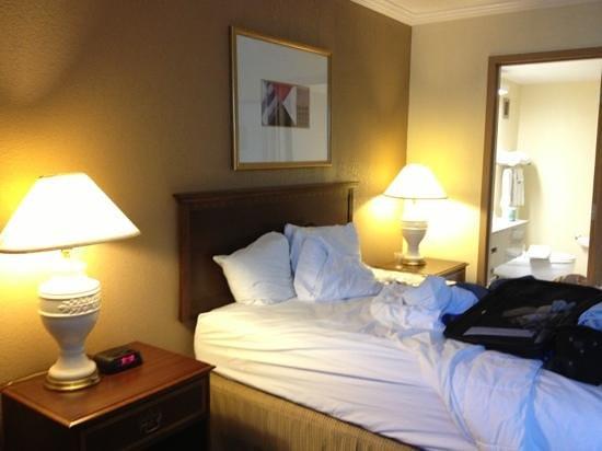 Clarion Hotel Detroit Metro Airport: my room