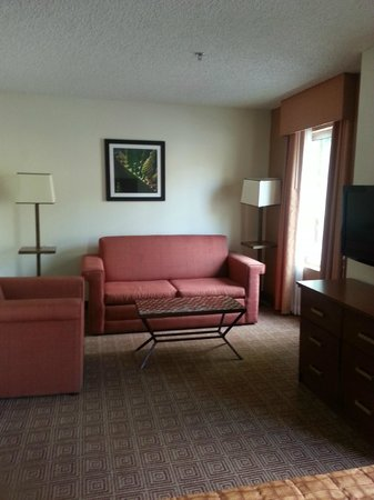 La Quinta Inn & Suites Danbury : SUITE - BRIGHT, AIRY, PULL OUT BED