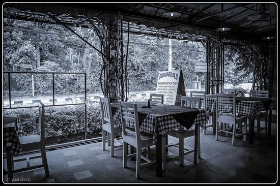 Angela's Bakery & Cafe : External Dining Area