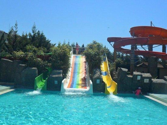 Royal Dragon Hotel: slides