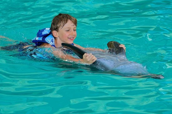 The Zala Villa Bali: Mommy, can we take the dolphin home??