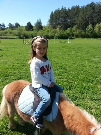 El Porton: A caballo ganador