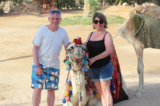 Coral Sea Holiday Village: special mention for Bobby the camel.