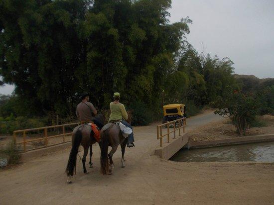 Rancho Santana: on the way to the pyramids of Tucume