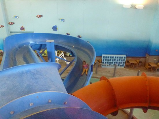 Ramada Plaza Omaha Hotel and Convention Center: Smaller twisty slides (still pretty good sized) perfect for kids and adults can go down them too
