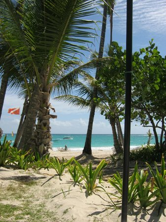 Grand Palladium Punta Cana Resort & Spa: Ausblick zum Strand