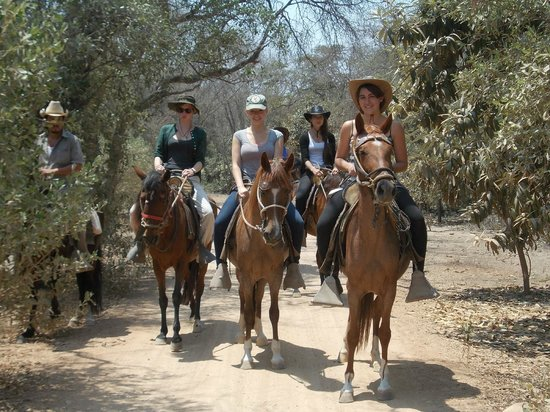 Rancho Santana: in the forest