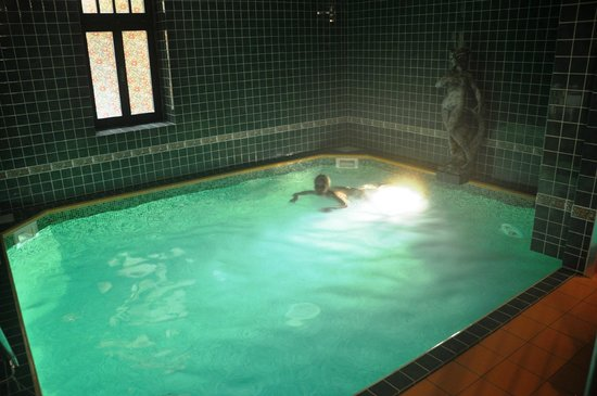 Grand Hotel Praha: Private swimmingpool
