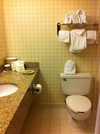Quality Hotel: Room 694 - towel rack & toilet between sink & tub