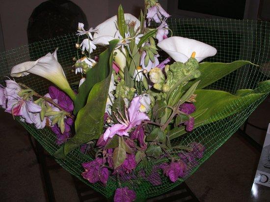 From the garden at midsummer