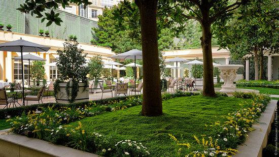 Le Bristol Paris: Le Bristol's new garden