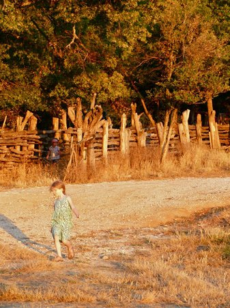 La Ferme du Castelas : Kid enjoys an after-dinner romp
