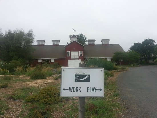 Frog's Leap Winery: Work or play?
