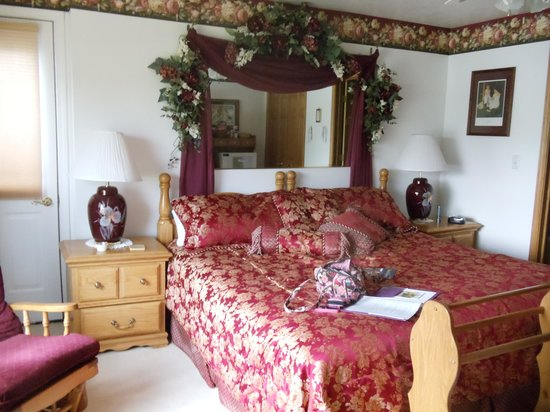 Spring View Bed & Breakfast: burgandy room