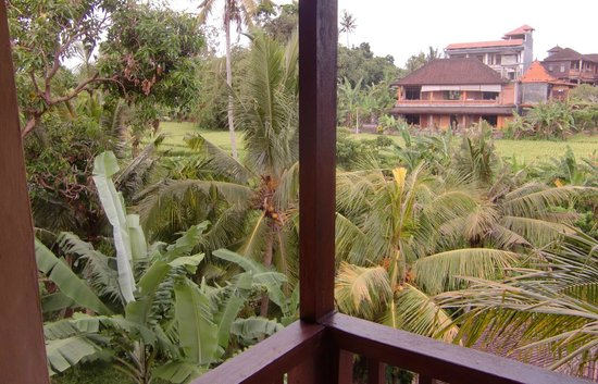 Sri Bungalows: view from the balcony at the back side