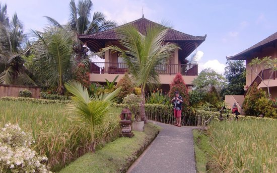 Sri Bungalows: walking through the rice field to go to our room at first floor