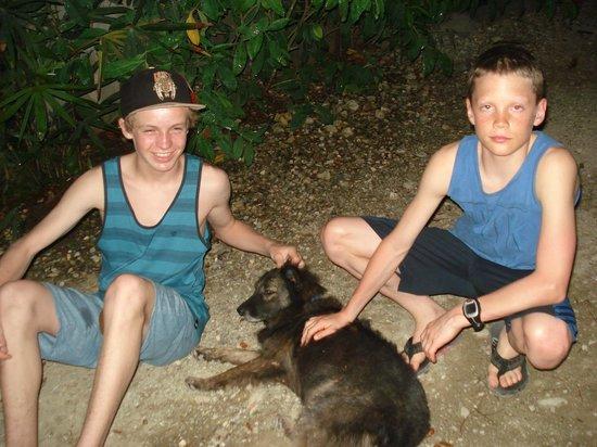 Casas de Soleil: More doggy fun!