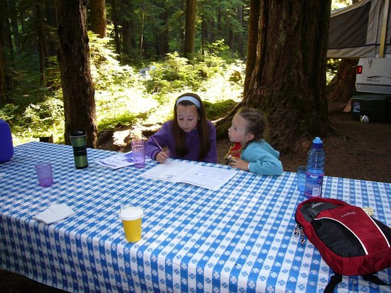Ohanapecosh Campground : Working on earning their Junior Ranger Badge