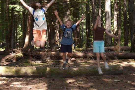 Ohanapecosh Campground : We love Ohanapecosh and Mt. Rainier!