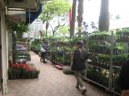ถนนตลาดดอกไม้: Flower Market