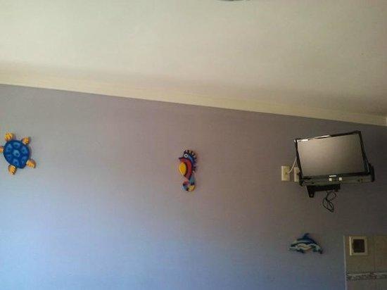 Bamboo Flat: TV tela plana - canais abertos. Linda decoração na parede do meu flat.