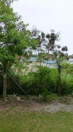 Berjaya Praslin Resort - Seychelles: notre sublime vue