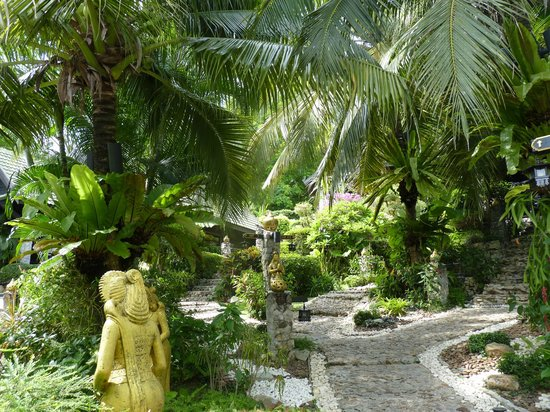 Boomerang Village Resort: jardin