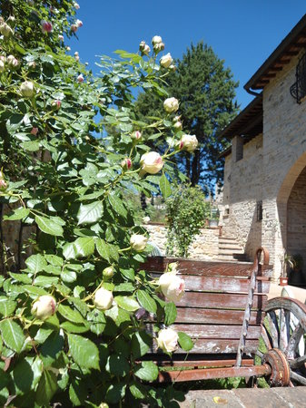 Sulle Orme di Dante Agriturismo: casa
