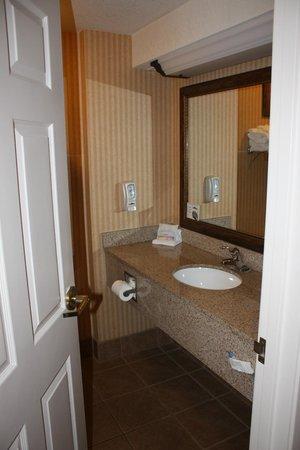 Grand Plaza Hotel Branson: Nice Countertops