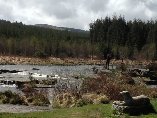 Galloway Activity Centre: A perfect lunch spot on our cycle as recommended by the staff!