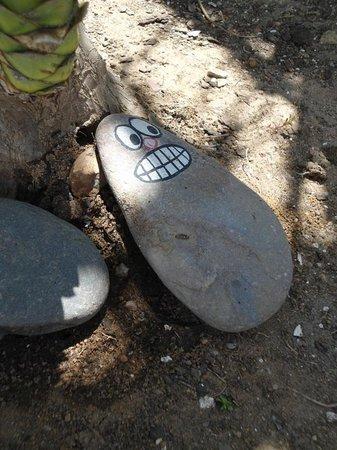 Deluxe Surfhouse Algarve – Surfcamp Portugal: Sogar die Steine habengute Laune.