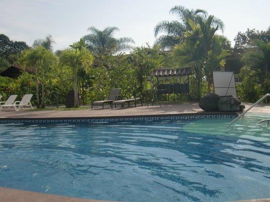 Casa Luna Hotel & Spa: Pool Area