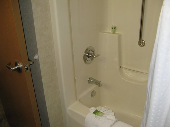 Holiday Inn Express Holland : The shower of room 316