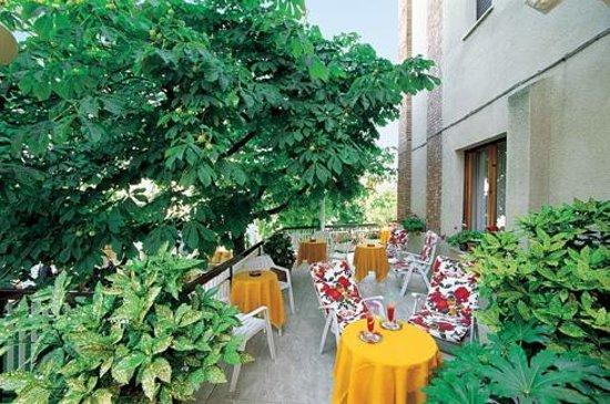 Hotel Risorgimento : Terrazzo