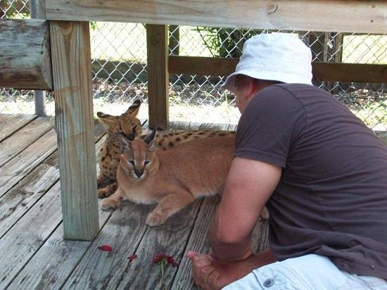 Panther Ridge Conservation Center: Add a caption