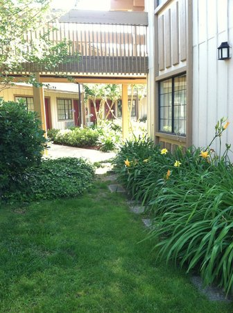 Red Roof Inn San Dimas - Fairplex : Hotel grounds