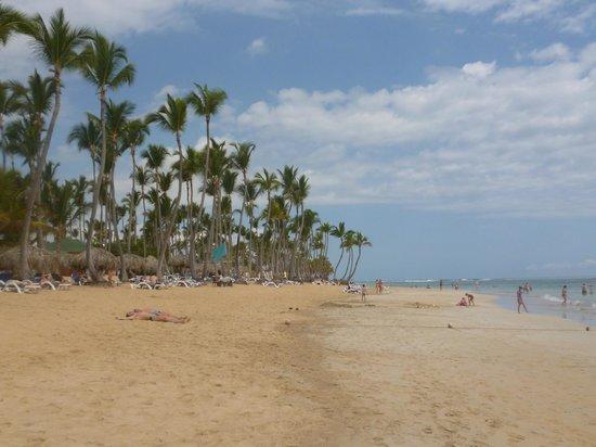Sirenis Punta Cana Resort Casino & Aquagames: plage de l'hôtel