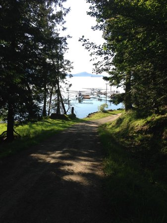 Saturna Island Family Estate Winery: Walk from the dock